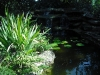 waterfall_with_pond_14